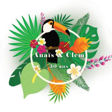 Illustration toucan - Anaïs Clavel, designer graphique